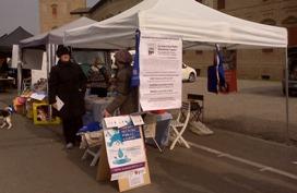 Scandiano (RE) – 17, 19 e 24 Marzo 2013, Banchetto Informativo RIP-MRU