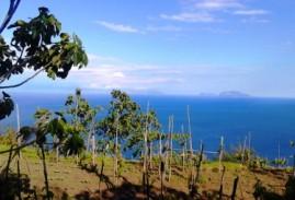 Una Camminata sull'Isola d'Ischia