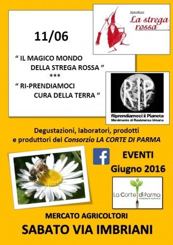 11 GIUGNO 2016 Parma (1)