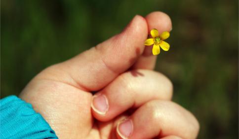 A1 - RIP_CE - Francesca Manodori - Il Mondo Dei 5 Sensi - L'importanza dell'Esperienza Diretta